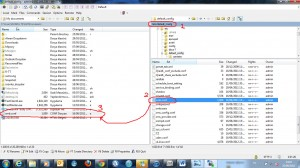Qnap File system is not clean - IT Support Singapore Company for